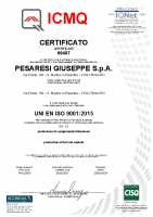 Certificato ISO 9001 Prod. CGB ICMQ 2021-2024 n. 00487
